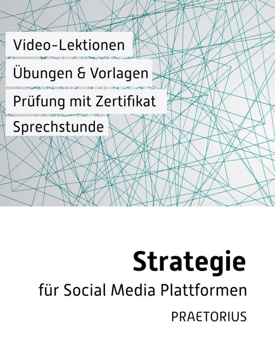 Video-Kurs Social Media Strategie Audit